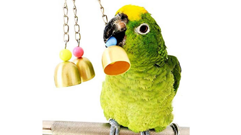 Budgie Bell Toy