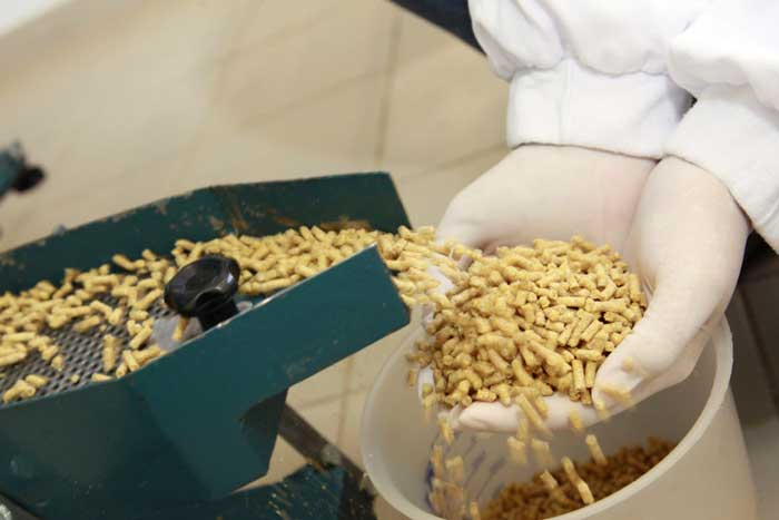 Bird Feed Manufacturing